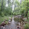 Christopher Creek - See Canyon