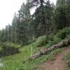 Hiking along the Woods Canyon Lake trail