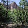 Views from Boyton canyon