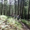 hikers on the Aspen loop trail