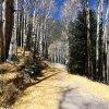 Golden trail to the Inner basin