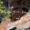 Ruins in Pueblo canyon