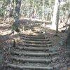 Hiking Mount Takao