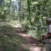 hiking through pine canyon