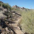 Trail to Stoney Mountain