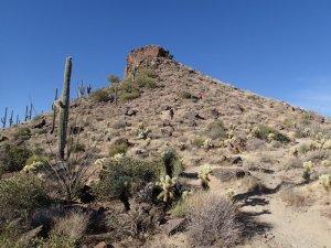 Brown's Mountain - McDowell Sonoran preserve