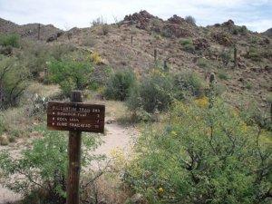 Pine creek loop trail