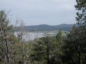 Views from Mormon Mountain of Mormon lake