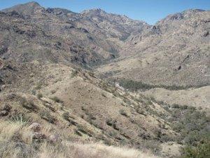 Sabino canyon to Bear Canyon loop hike