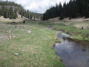West fork of the Black river