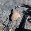 Pottery shard at the Sears Kay site