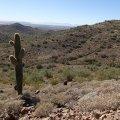 Dixie summit loop hike - Phoenix sonoran preserve