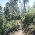 Sierra Prieta trail