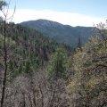 Groom Creek Loop hike