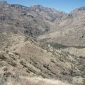 Sabino canyon to Bear Canyon loop hike