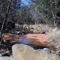 Bear sign creek