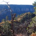 Fall colors on the Old Bright Angel trail