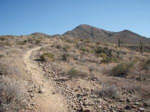 Trail to Daisy mountain